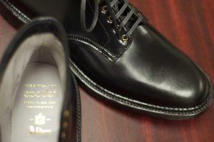 Alden Raven Ryden Boot