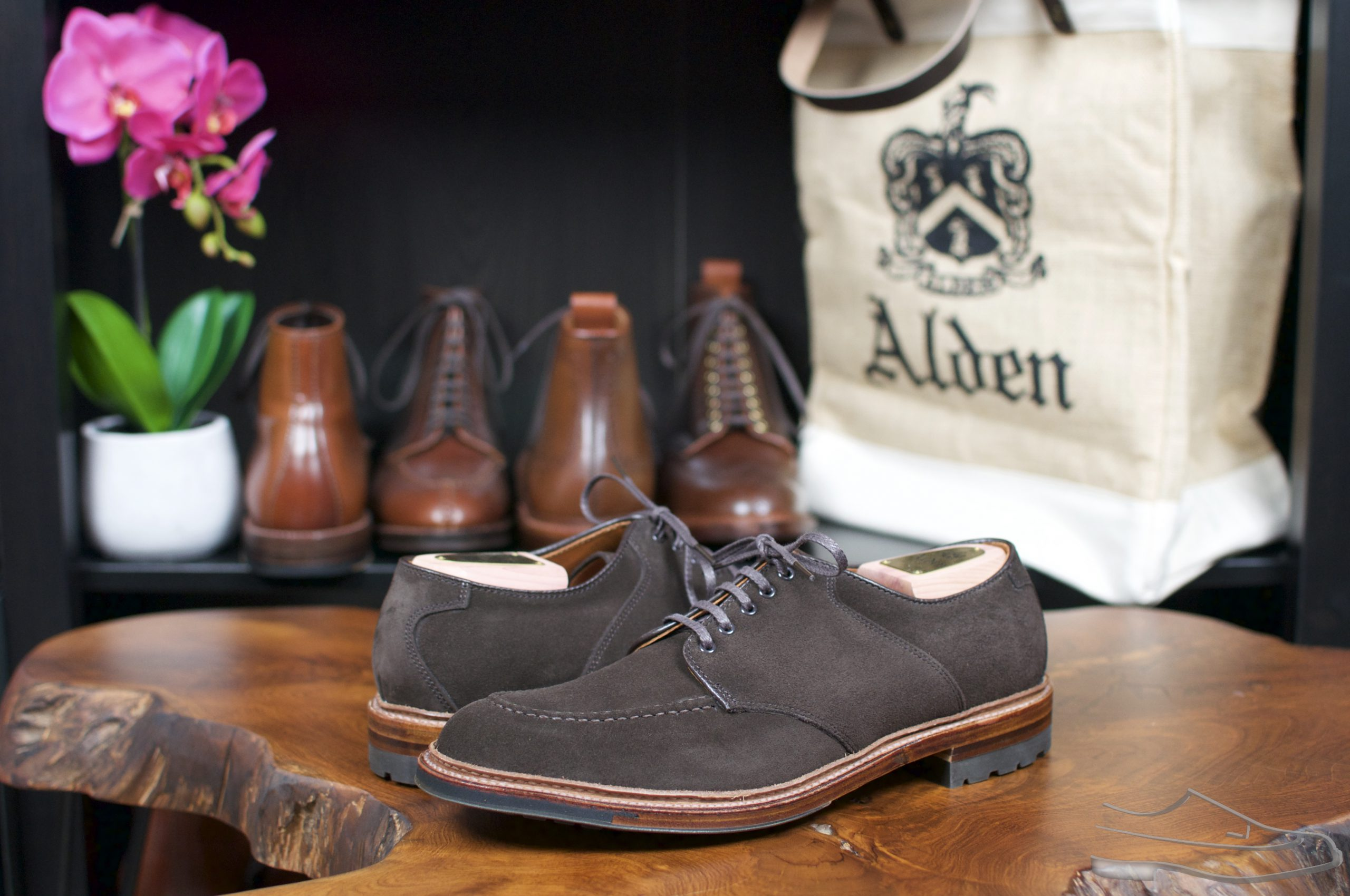 Alden AOC-81 Choco Suede U-Tip Saddle Blucher